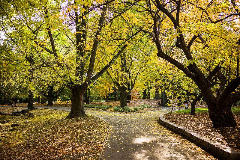 É impossível não ficar encantado com as belezas do Jardim Botânico do Brooklyn, em Nova York, nos EUA - Diacritical via VisualHunt.com / CC BY - Diacritical via VisualHunt.com / CC BY/Rota de Férias/ND