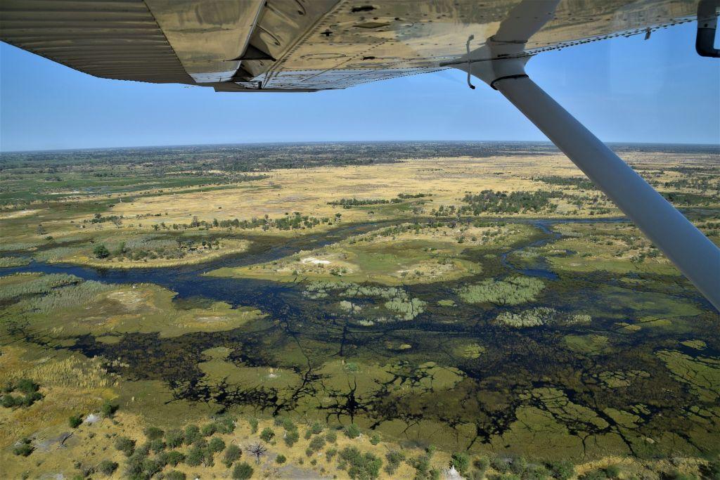 Delta do Okavango, Botsuana - Pixabay - Pixabay/Rota de Férias/ND