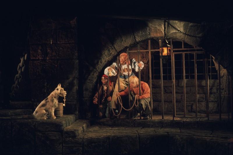 A atração Pirates of the Caribbean começou a fazer sucesso no parque da Disney na Califórnia, nos EUA, e foi levada ao Magic Kingdom em 1973. Durante o trajeto, a galera navega pelo mar e participa de uma série de aventuras envolvendo piratas. Quem senta nas pontas do barco pode acabar saindo um pouco molhado. Vale a pena destacar que as aventuras do brinquedo inspiraram a criação da famosa franquia de filmes