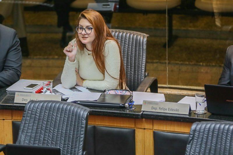 """Deputada quer criar """"Procuradoria Especial do Homem"""" em SC – Foto: Fábio Queiroz/Agência AL/ND"""