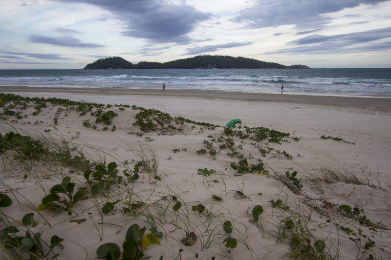 Se aprovado, emissário submarino vai passar ao norte da Ilha do Campeche. Foto Flavio Tin/ND