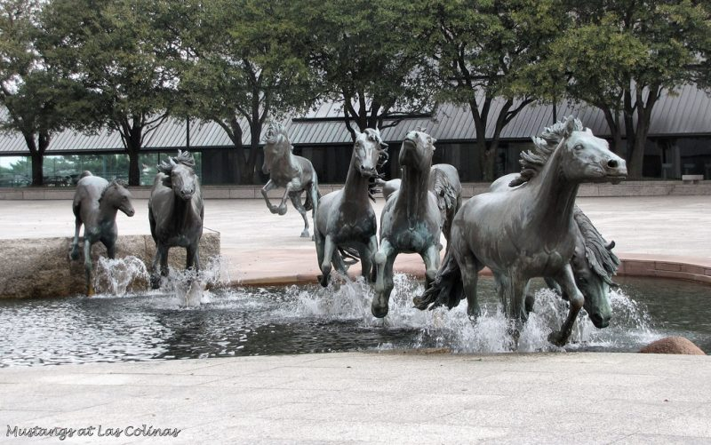Mustangs de las Colinas, EUA - Adventures of KMeG-Morris on Visualhunt / CC BY-NC-ND - Adventures of KMeG-Morris on Visualhunt / CC BY-NC-ND/Rota de Férias/ND