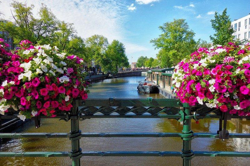 Amsterdã, na Holanda - Pixabay - Pixabay/Rota de Férias/ND