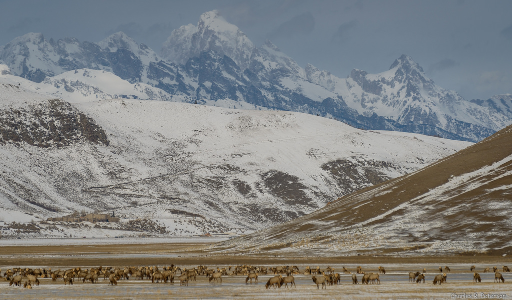 Jackson Hole, Wyoming – EUA - petechar on Visual Hunt / CC BY-NC-ND - petechar on Visual Hunt / CC BY-NC-ND/Rota de Férias/ND