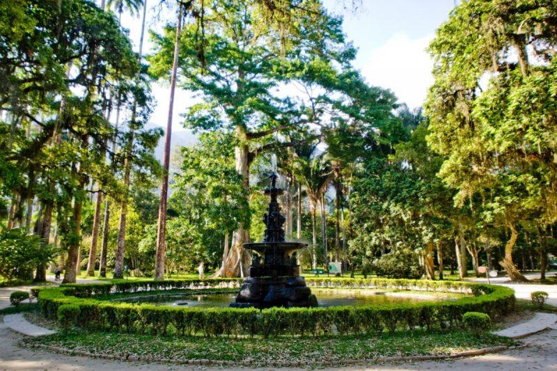 O Jardim Botânico é um atrativo para quem quer se conectar com a natureza - Pedro Kirilos/Riotur - Pedro Kirilos/Riotur/Rota de Férias/ND