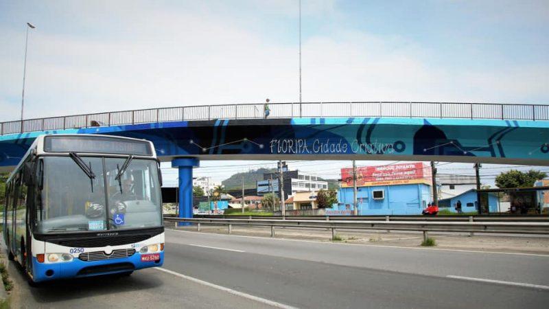 Viaduto SC - Divulgação ND