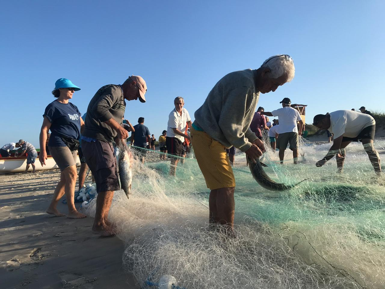 Pesca da tainha no Campeche - Anderson Coelho/ND