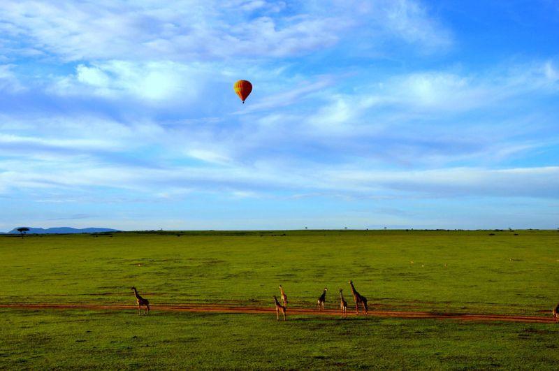 Além de explorar a natureza e ver animais selvagens, os visitantes da Reserva Nacional de Masai Mara, no Quênia, podem fazer passeios de balão - Wajahat Mahmood via Visual hunt / CC BY-SA - Wajahat Mahmood via Visual hunt / CC BY-SA/Rota de Férias/ND