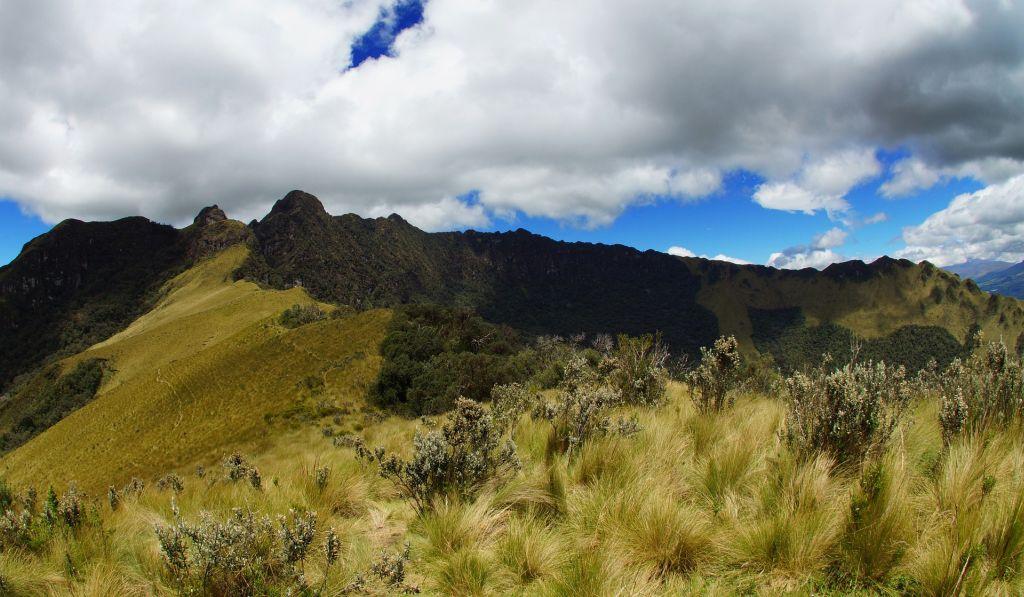 Ecuador Cloud Forest, Equador - Pixabay - Pixabay /Rota de Férias/ND
