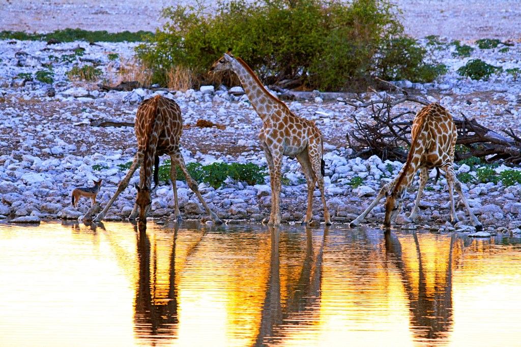 15 destinos que promovem o turismo sustentável - - /Rota de Férias/ND