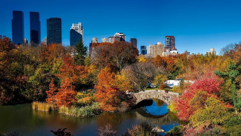 2- Central Park - Nova York, Estados Unidos - David Mark por Pixabay - David Mark por Pixabay /Rota de Férias/ND