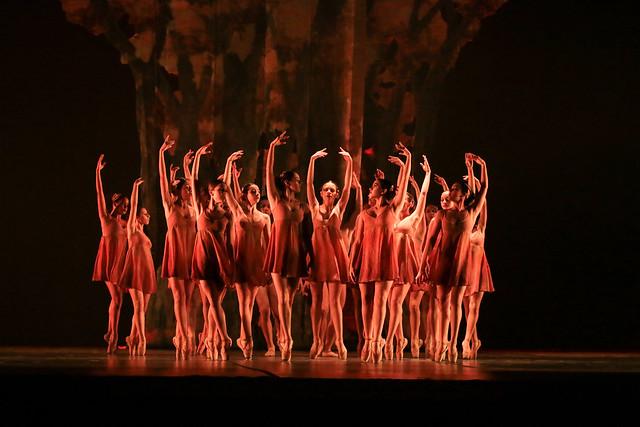 """""""Folhas Secas"""", Ballet Adriana Assaf: 2º Lugar Balé Neoclássico l Conjunto l Júnior - Maykon Lammerhirt / Festival de Dança / Dilvugação"""