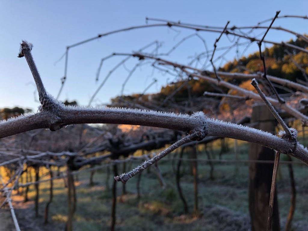 Tangará registrou baixas temperaturas no fim de semana - Reprodução/RI