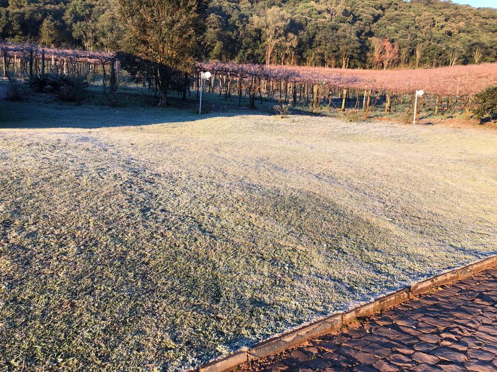 Tangará registrou baixas temperaturas no fim de semana - Reprodução/RICTV