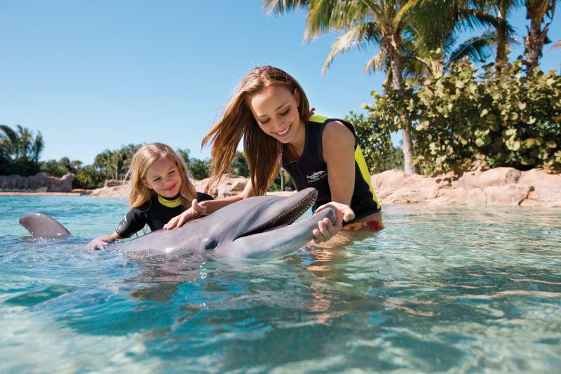 Irmão do SeaWorld e do Aquatica, o Discovery Cove recria belos cenários tropicais. A atração mais procurada é o nado com os golfinhos - Divulgação - Divulgação/Rota de Férias/ND
