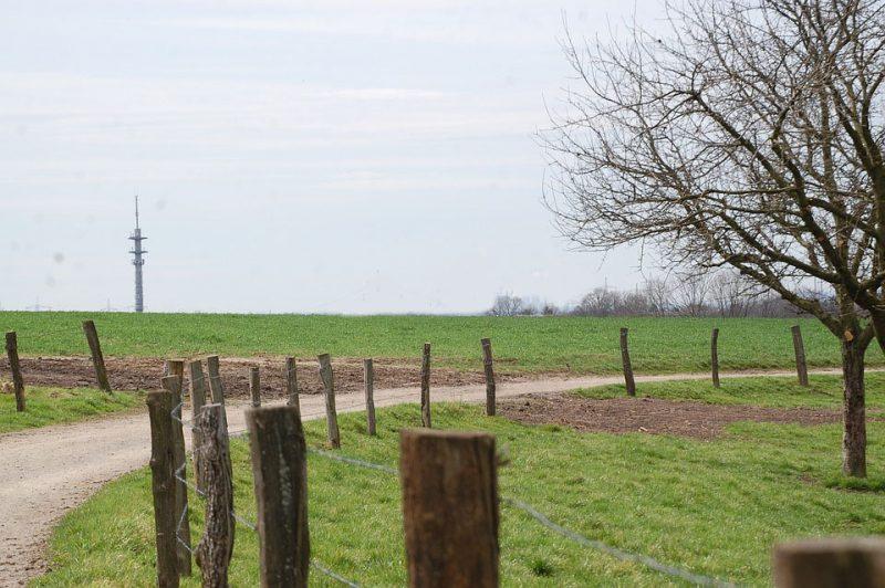 Homem foi assassinado a tiros após construir uma cerca no terreno em que dizia ser proprietário. – Arquivo/Pixabay/Divulgação/ND