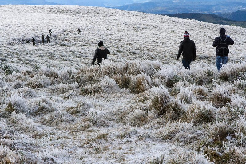 Em Urupema, região serrana, a temperatura negativa proporcionou uma nova vista das paisagens e atingiu -3°C durante o dia – Foto: Flávio Tin/Arquivo/ND