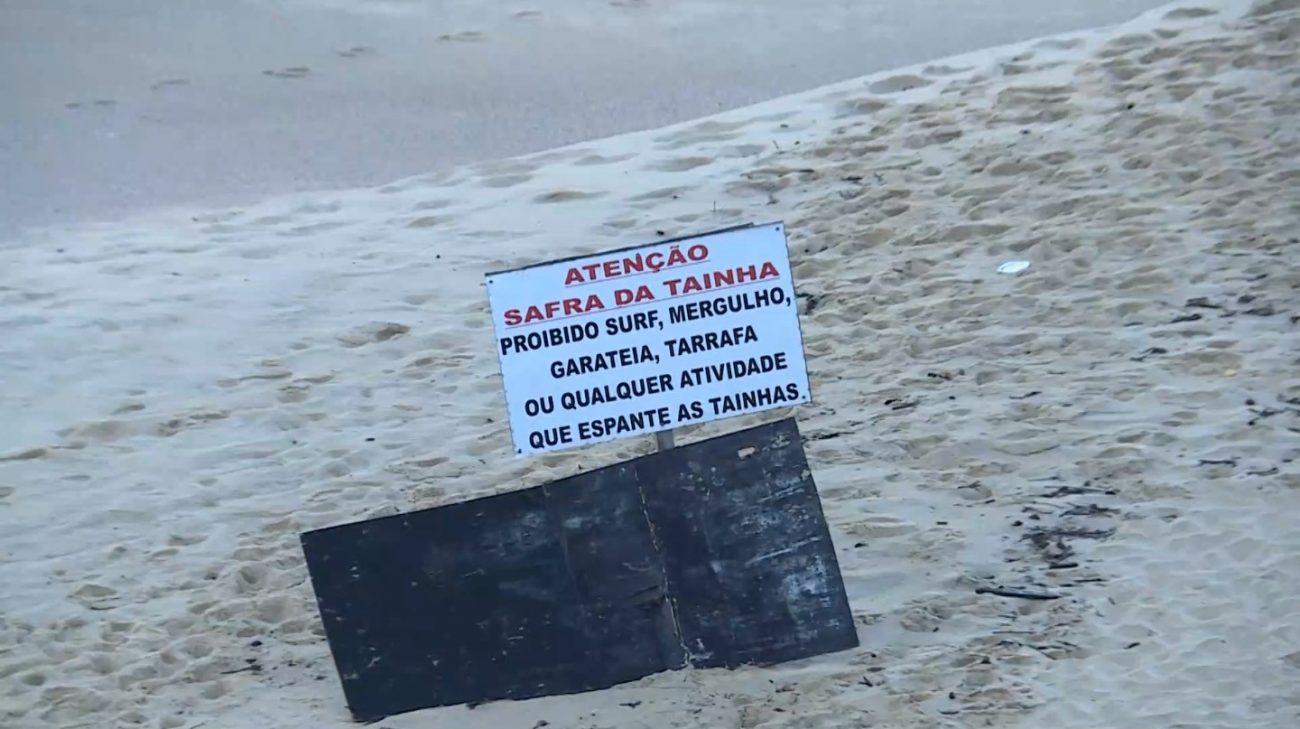 Orientações para não atrapalhar a pesca das tainhas - Elias Gotaski/RICTV