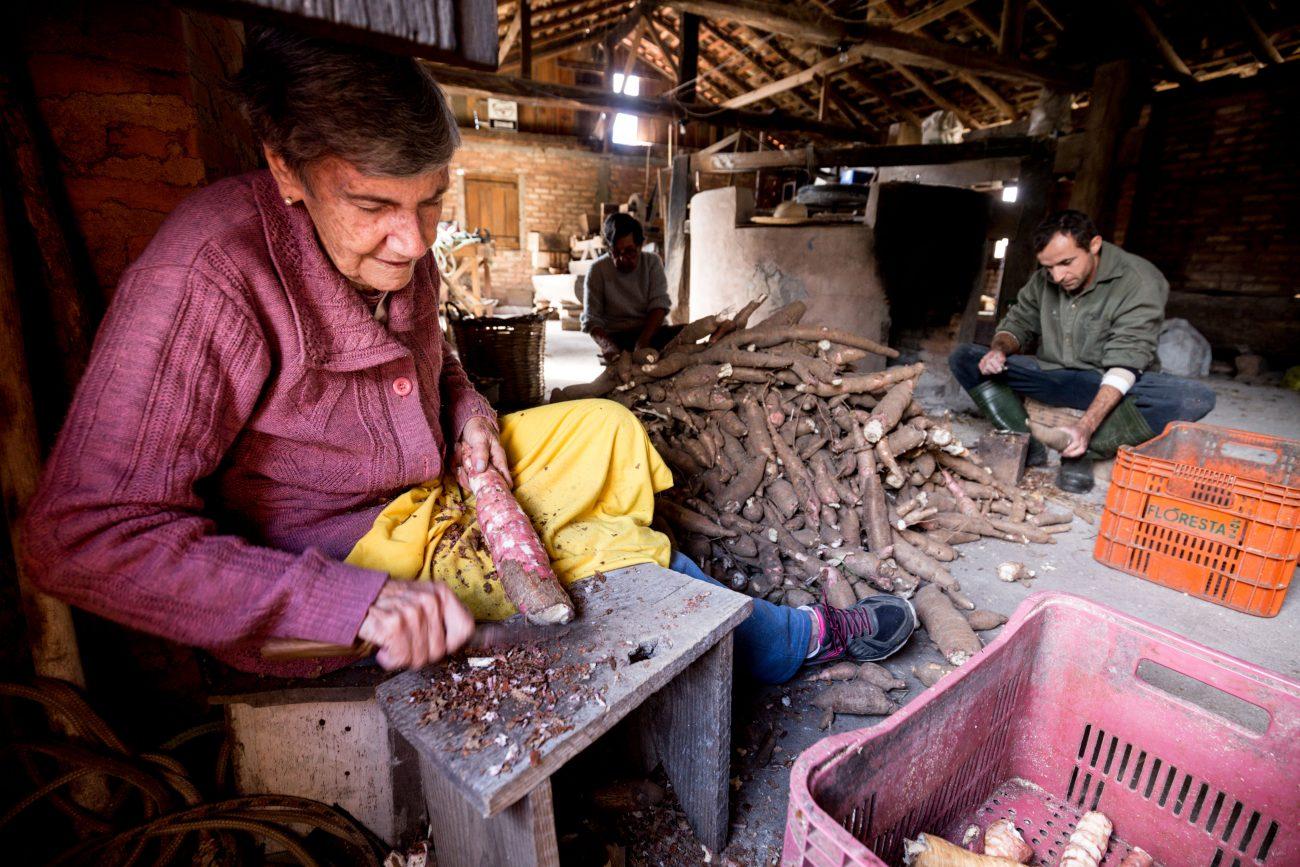 Raspagem é a primeira fase do feitio da farinha, quando a casca marrom é retirada - Anderson Coelho/ND -