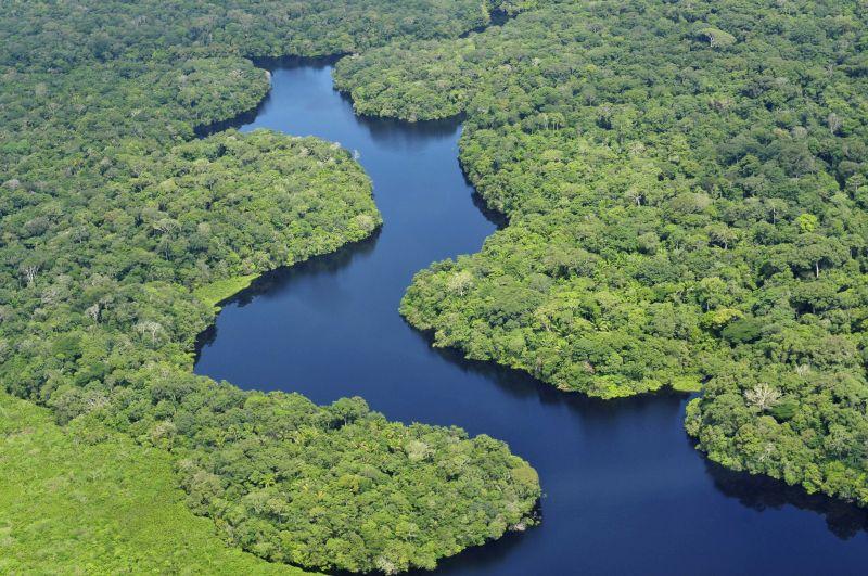 Por ser a floresta mais famosa do mundo, a Amazônia chama a atenção dos estrangeiros que visitam o Brasil - Wikimedia/Neil Palmer/CIAT - Wikimedia/Neil Palmer/CIAT/Rota de Férias/ND