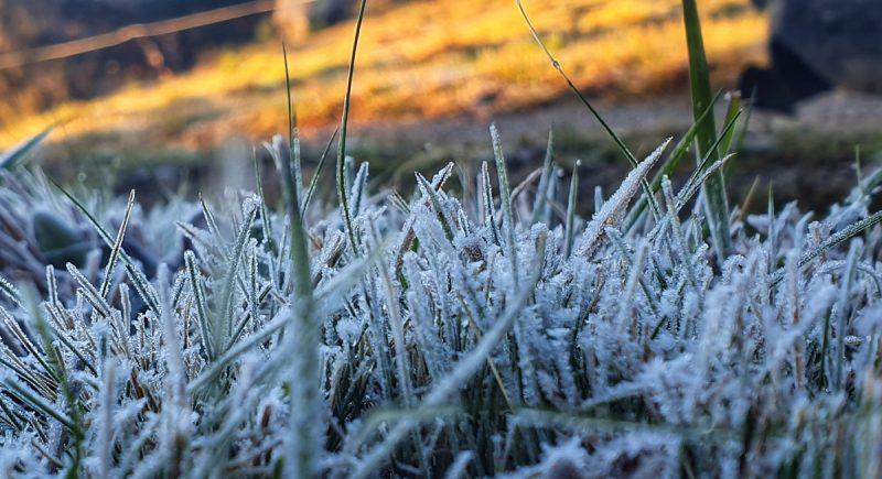 De acordo com a Epagri, durante esse mês há a possibilidade de dias de frio intenso, com temperaturas negativas e formação de geada. – Foto Mycchel Legnaghi