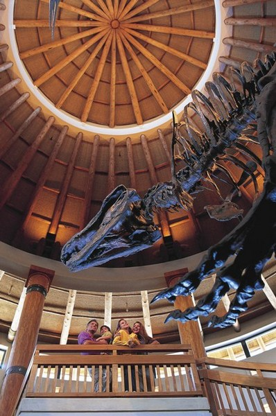 No Jurassic Park Discovery Center, os visitantes podem aprender mais sobre os dinossauros e ainda comprar itens temáticos - Divulgação - Divulgação/Rota de Férias/ND