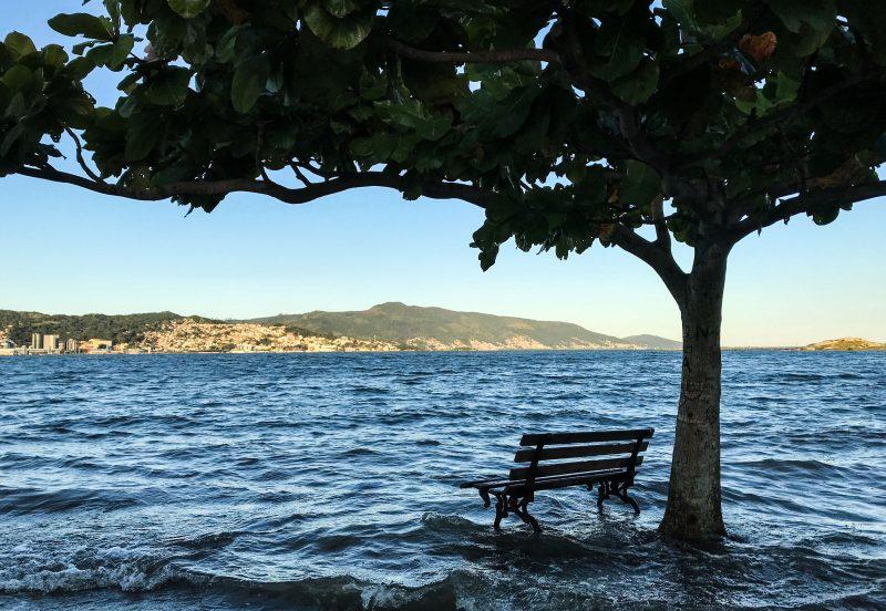 Maré alta no Parque de Coqueiros, em Florianópolis - Anderson Coelho/ND