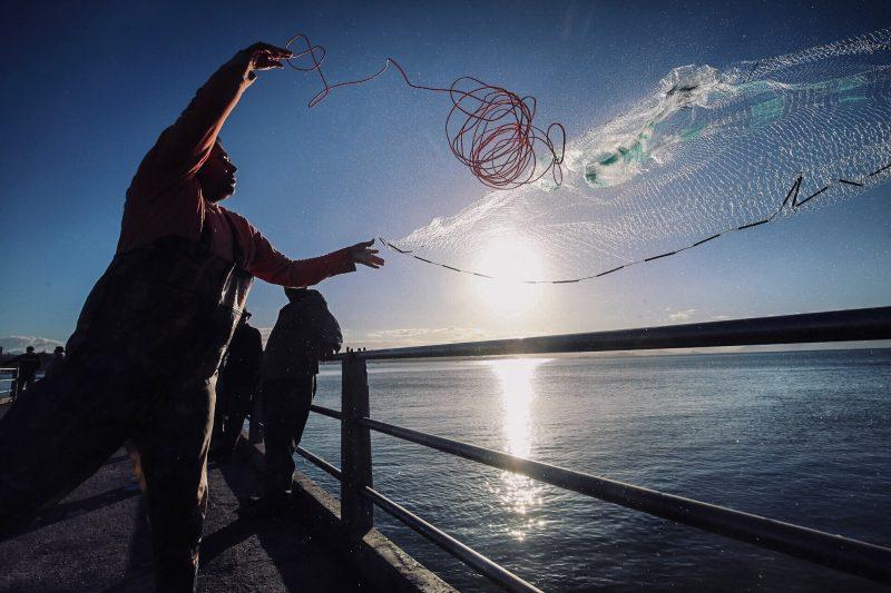 Pescador urbano, na baía da Beira-Mar Norte, em Florianópolis - Anderson Coelho/ND