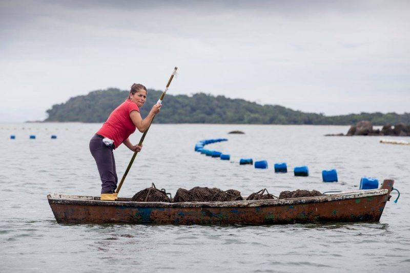 Pescadora no Ribeirão da Ilha, em Florianópolis - Flavio Tin/ND