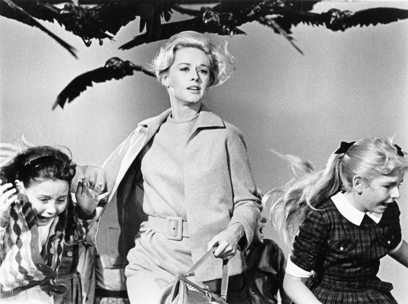 """Em """"Os Pássaros"""", a rica Melanie Daniels e o cobiçado solteirão Mitch Brenner se encontram na cidade de Bodega Bay, quando acontece uma série de ataques de pássaros - Divulgação/ND"""