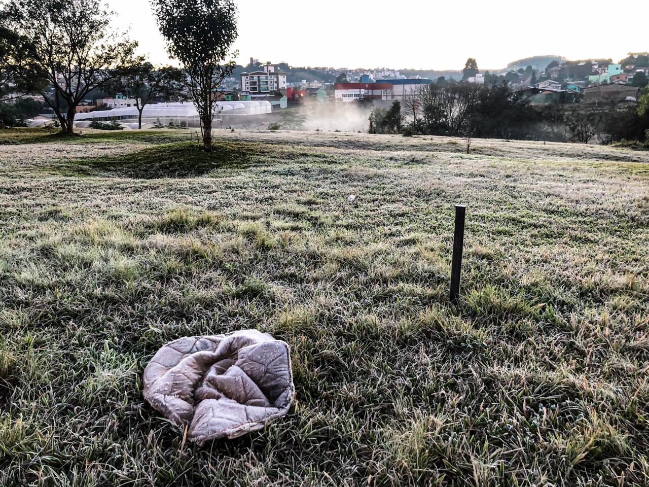 Em Chapecó, durante a madrugada deste sábado os termômetros registraram temperaturas entre entre 5ºC e 2ºC - Willian Ricardo/ND