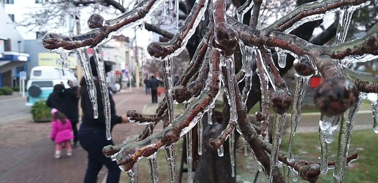São Joaquim, na Serra catarinense, amanheceu gelada neste domingo - Wagner Urbano