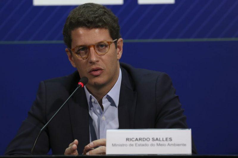 O Ministro do Meio Ambiente, Ricardo Salles fala à imprensa, após reunião com os integrantes do Centro de Operações Conjuntas
