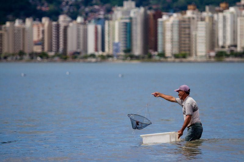 Pescador na baía Norte, no Estreito - Foto Flavio Tin/ND