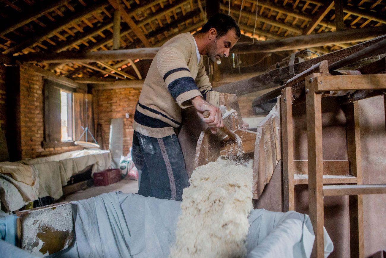 Após passar pelo forno, a farinha é retirada e descansa por 48 horas para esfriar e estar pronta para o consumo - Flavio Tin/ND