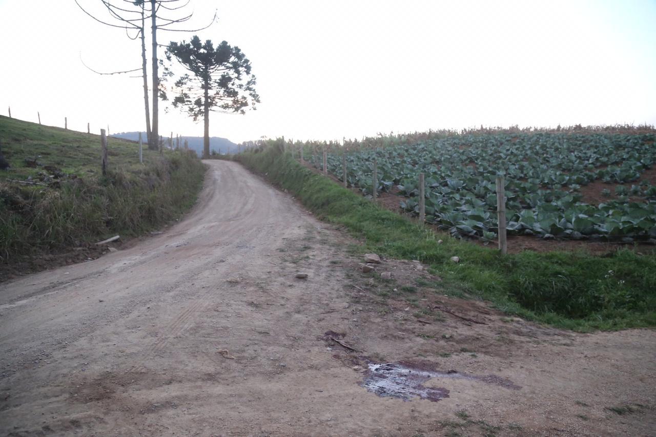 O crime ocorreu numa zona rural, afastada do município, como mostra o acesso à residência onde tudo aconteceu - Anderson Coelho/ND