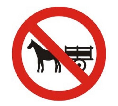Proibido o trânsito de veículos de traço animal - Foto: Reprodução - Foto: Reprodução/Garagem 360/ND