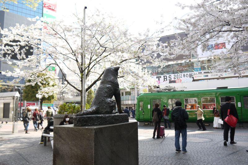 A estátua do cachorro Hachiko, que ficou mundialmente conhecido graças ao filme