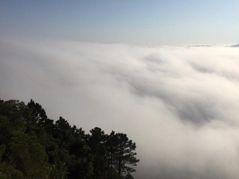Nevoeiro em Florianópolis fez com que voos fossem cancelados – Gustavo Bruning/ND