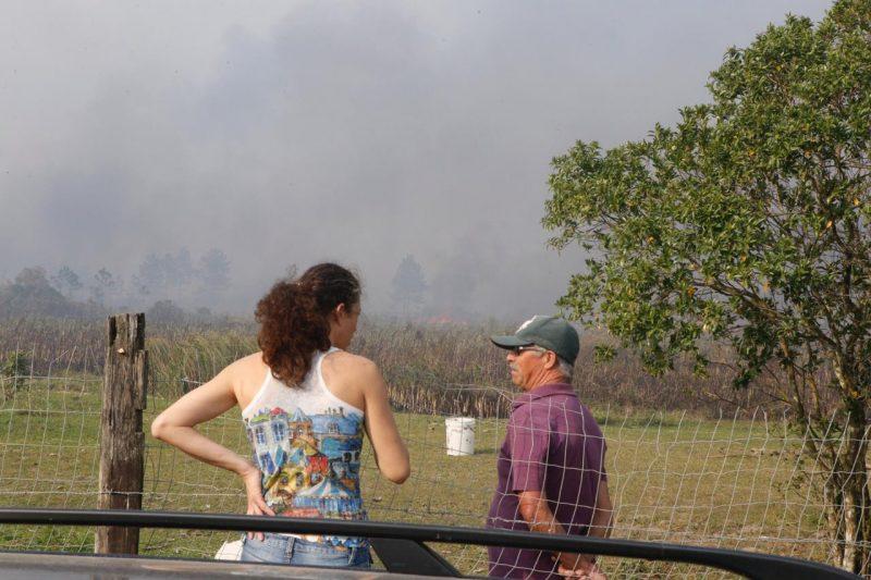 Devido o forte vento na tarde desta quarta-feira (11), o fogo acabou se expandindo - Flávio Tin/ND