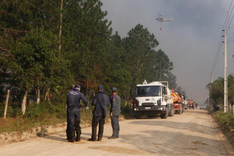 O Corpo de Bombeiros Militar trabalha desde 11h30 desta terça-feira (10), tentando apagar as chamas - Flávio Tin/ND