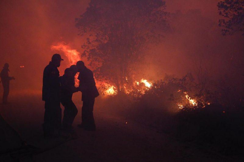Um incêndio de proporções gigantescas que atingiu o parque no dia 10 de setembro destruiu mais de 800 hectares da vegetação - Flávio Tin/ND