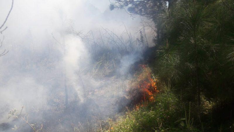 O mês de setembro chegou trazendo fogo e destruição ao Parque Estadual da Serra do Tabuleiro, na Grande Florianópolis - PMA/Divulgação