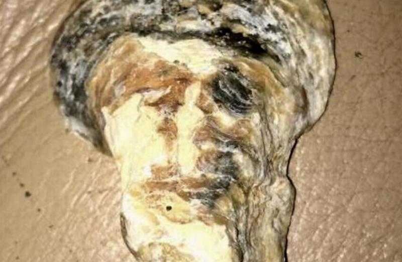 É Osama Bin Laden ou não é? – Foto: Reprodução