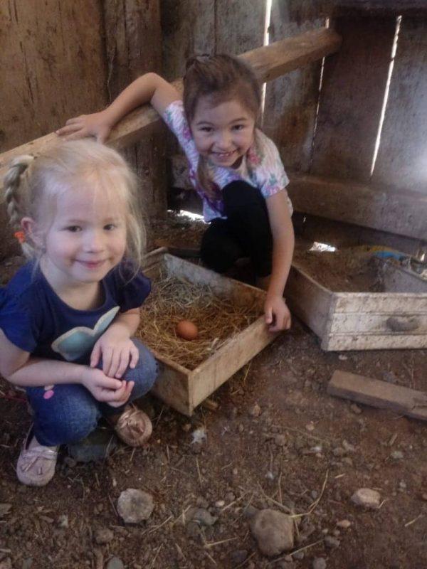 As meninas Eloá, de 5 anos, e Eduarda, 7, morreram no acidente – Foto: Fernanda Figueiredo/Arquivo Pessoal/ND