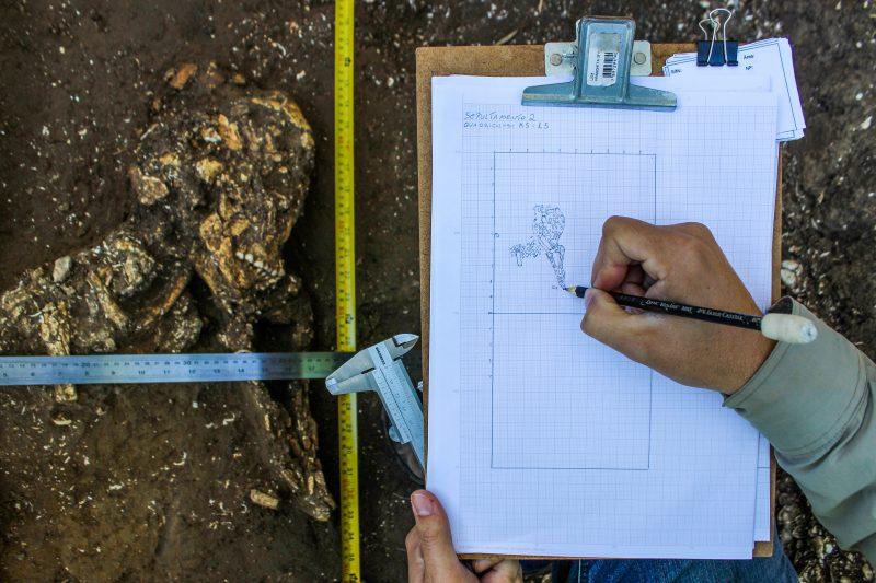 Material está sob a guarda da Unesc (Universidade do Extremo Sul Catarinense) em Criciúma - Espaço Arqueologia/Divulgação/ND