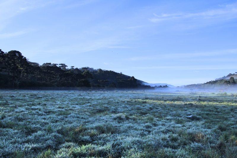 No horário, as localidades Boava e Despraiado as temperaturas chegaram a 8°C - Mycchel Legnaghi/São Joaquim Online/Divulgação/ND