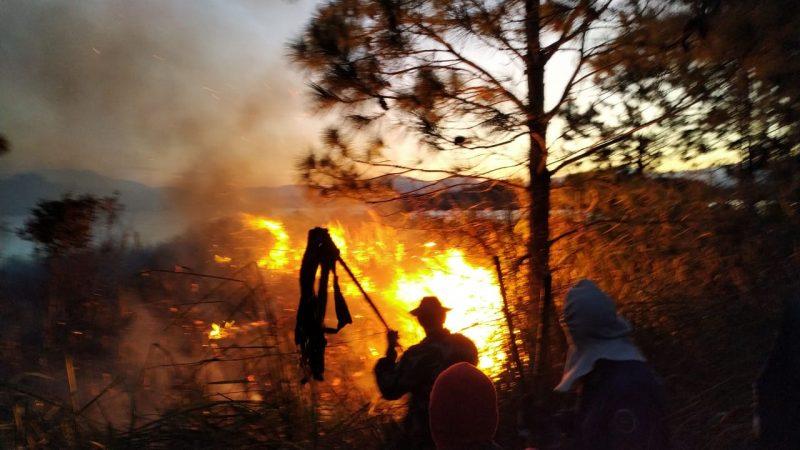 O último foco de incêndio, ainda não controlado totalmente, teve início nesse domingo (13) - Polícia Ambiental/Divulgação/ND