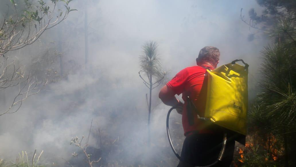 Até o momento, mais de 1.000 hectares de vegetação já foram consumidos pelo fogo desde o início do mês de setembro, equivalente a mais de 1.000 campos de futebol - Polícia Ambiental/Divulgação/ND