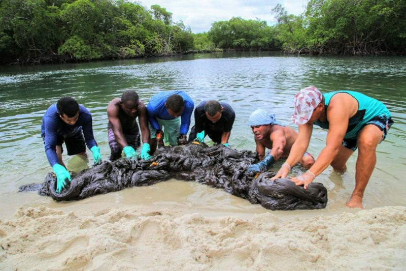 Cerca de 10 toneladas de manchas de óleo foram retiradas da Praia de Suape, no Cabo de Santo Agostinho- Foto: Léo Domingos/Fotos Públicas